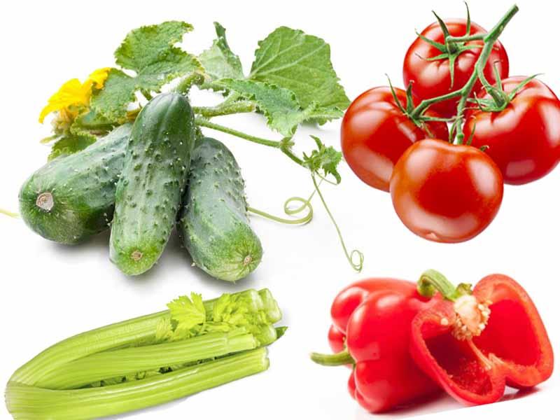 раздельное питание это можно овощи есть с другимипродуктами