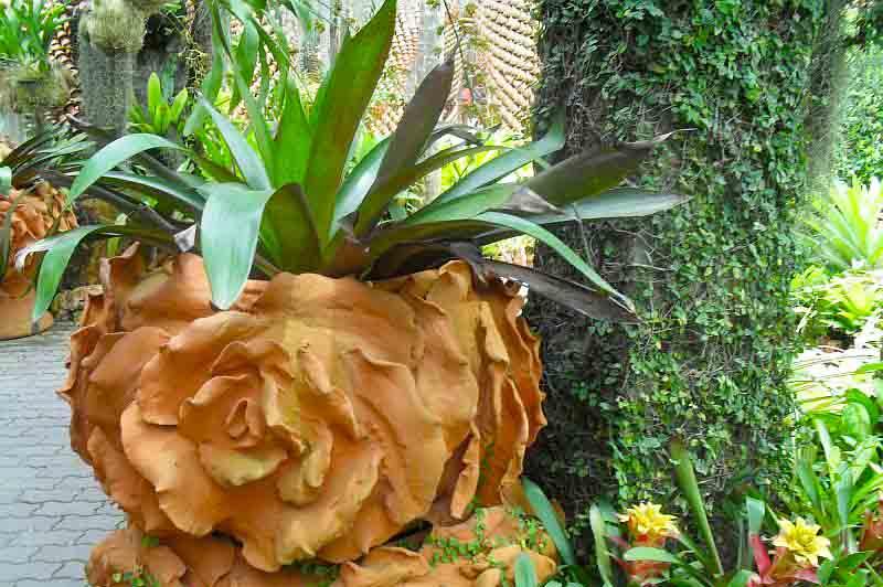 Тропический парк Нонг Нуч красивый горшок