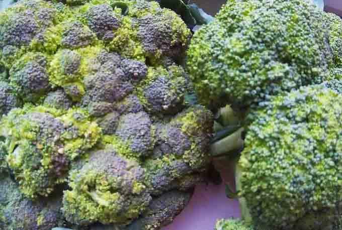 кефирно гречневая диета включает капуста брокколи