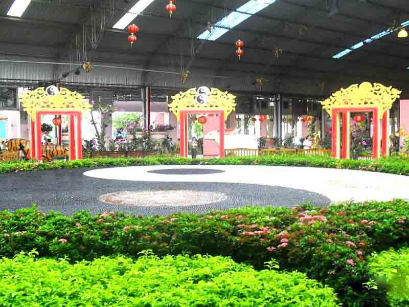 отдых в Таиланде во дворце короля кур