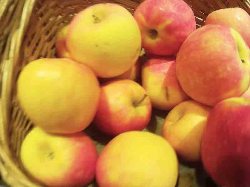 хочешь похудеть похудей с помощью яблок