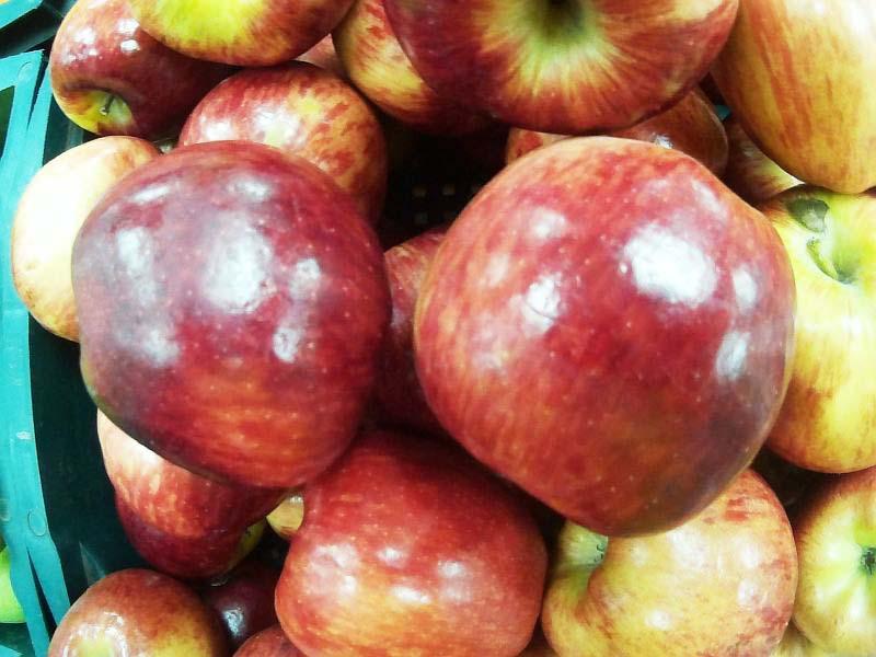 английская диета рекомендует фрукты