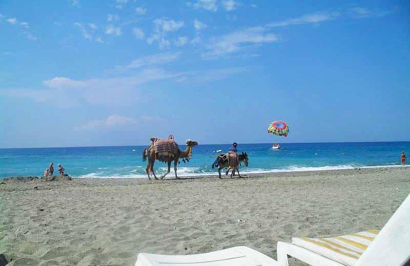 Отдых в Тунисе, пляж