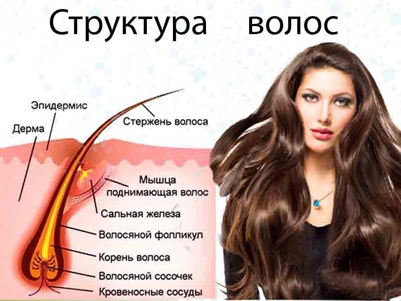 от выпадения волос лечение назначено девушке