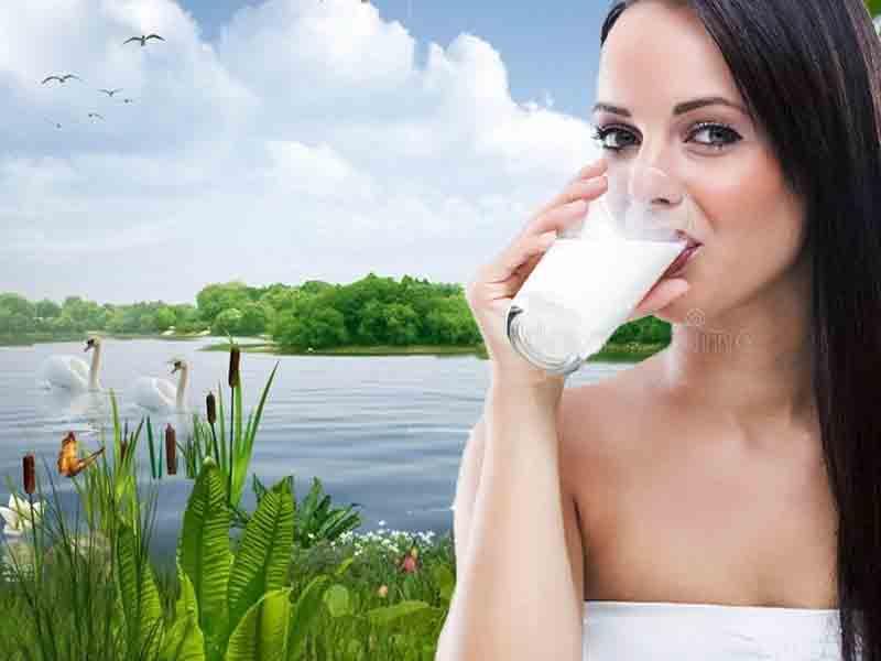 молочная диета помогает похудеть