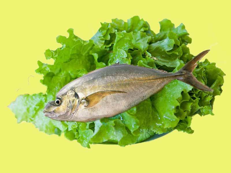 На рыбе диета очень полезная