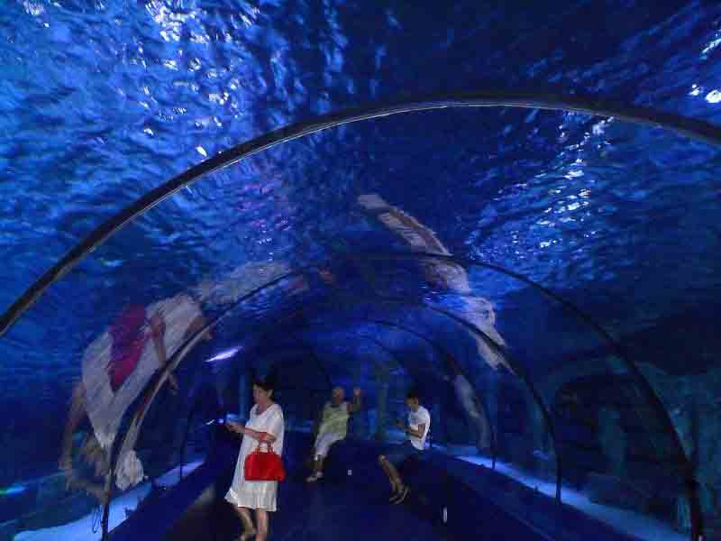 стеклянная галерея океанариума